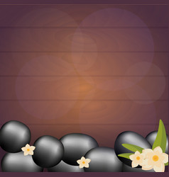 Spa salon banner with stones thai massage wood vector