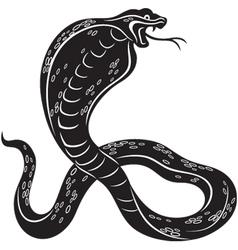 cobra snake vector image vector image
