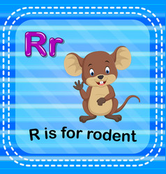 Flashcard letter r is for rodent vector