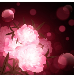 flowers over holiday background vector image vector image