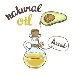 Avocado oil Glass Bottle vector