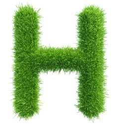 capital letter h from grass on white vector image