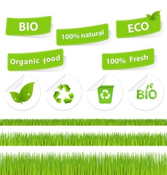 eco set with grass vector image vector image