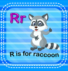 flashcard letter r is for raccoon vector image