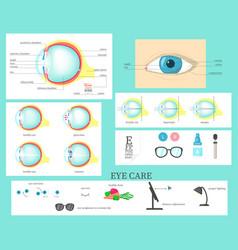 human eye infographic flat isolated vector image