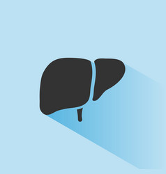 liver icon with shade on blue background vector image