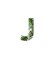 logo letter j tropical leaves vector image