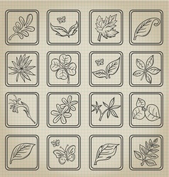 Natural Leafs Icon Doodle Set vector image vector image
