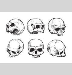 Skulls Hand Drawn Set 1 vector image vector image