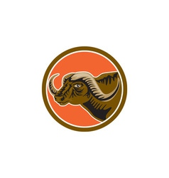 African Buffalo Head Side Circle Retro vector