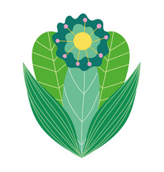 Beautiful flower foliage leaves vegetation icon vector