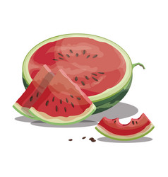 cartoon bite a piece watermelon slice of vector image