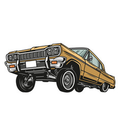 Colorful low rider retro car concept vector