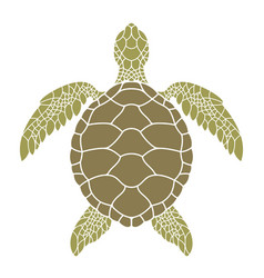 Green sea turtle vector