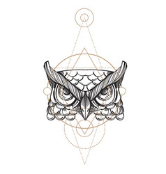 muzzle of an owl for creating sketches of tattoos vector image