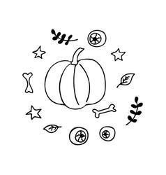Pumpkin leaf sprigs bones eyeballs stars vector