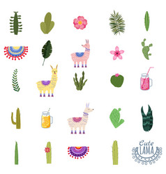 Set lama cacti drinks and decorative collection vector