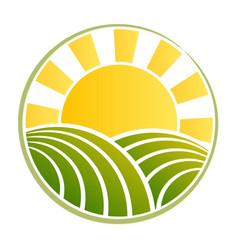 Wheat field symbol with dawn sun vector