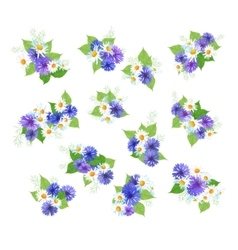 Wildflowers Bouquets Set vector
