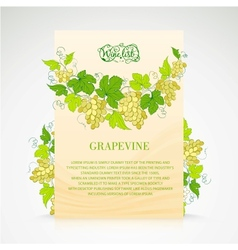 Wine list design with grapes decoration vector image