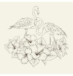 Flamingo background design vector image vector image