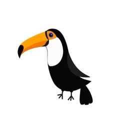 Toucan Toco Big yellow beak Beautiful Exotic vector image