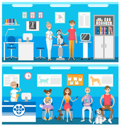 veterinarian hall reception vector image