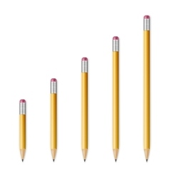 Yellow wooden sharp pencils vector
