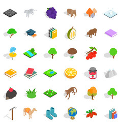 hedgehog icons set isometric style vector image vector image