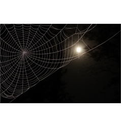 Web moon forest vector image