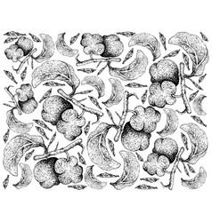 Hand drawn background of fresh artocarpus lacucha vector