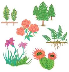 Plants trees flowers vector image