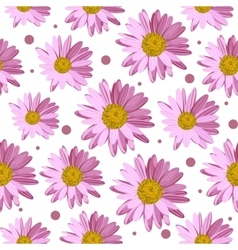 Seamless pattern with daisy flowers vector image