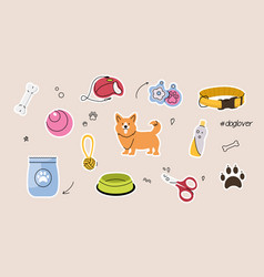 set of cute dog supplies and equipment on yellow vector image