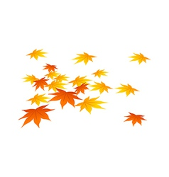The fall of leaves vector