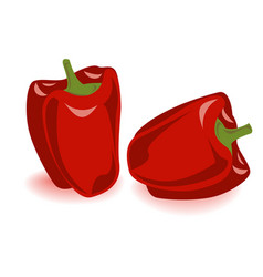 two bell pepper set vector image