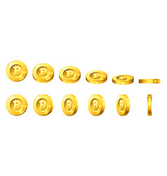 bitcoin for animation vector image