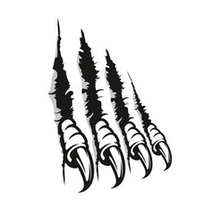 Bird prey claw marks scratches monster nails vector
