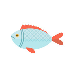Crucian river fish isolated icon vector