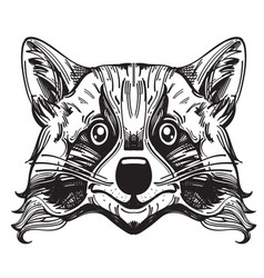 Muzzle raccoon for creating sketches of tattoos vector