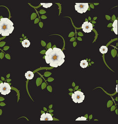 Rosehip flowers white flowers and green leaves vector