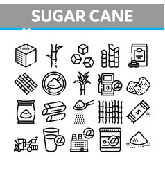 Sugar cane agriculture collection icons set vector