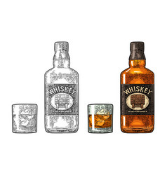 Whiskey glass with ice cubes and bottle label with vector