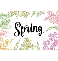 horizontal poster with flower blooming branch vector image vector image