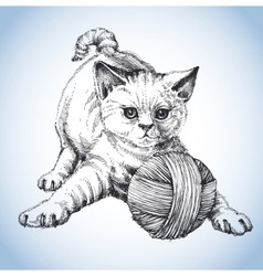 A cute cat playing with a ball of wool vector image