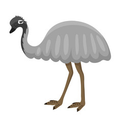 Australia wild ostrich animal cartoon character vector