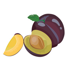 cartoon plum fresh vitamin fruit juicy sliced vector image