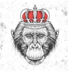 Hipster animal monkey in crown vector