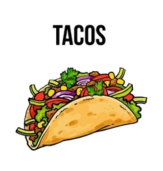 Mexican taco ground meet with vegetables in vector image