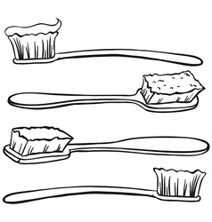 Toothbrushes vector image